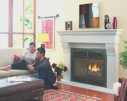 fireplace cool gas fireplace inserts cost decoration ideas