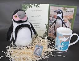 gift vouchers colchester zoo shop