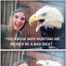 Dog Jokes Meme - better than bad joke dog because freedom by sir crozett meme