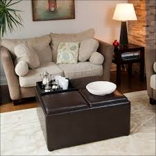 Ottoman With Shelf Furniture Magnificent Ottoman With Storage Fabric Step Stool