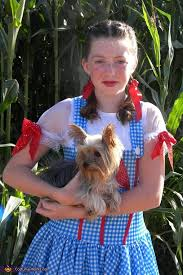 Dorothy Toto Halloween Costume U0027s Dorothy U0026 Toto Costume Photo 6 6