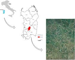 Map Of Sardinia Italy by Sustainability Free Full Text Perspectives On Cultural And