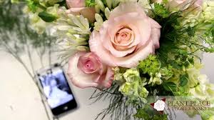 Next Day Flower Delivery Amherst Ny 14226 Florist Same Day Flower Delivery Plant Place