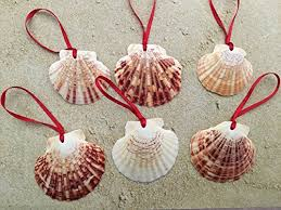 seashell tree ornaments for coastal