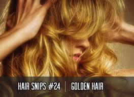 www hairsnips com old hollee wood holleewood hair