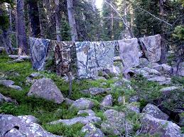 Color Blind Camouflage The Diy Hunter What Camo Patterns Work The Best