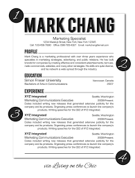 Sample Resume Of Ceo Living On The Chic Business And Professional Resume Design Tips