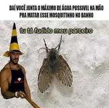Moth Meme - t磧 fudido meme by jvviegas memedroid