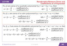 learnhive cbse grade 10 mathematics polynomials lessons