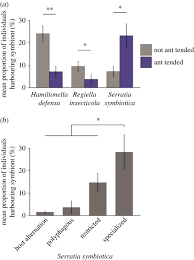 insect symbionts in food webs philosophical transactions of the