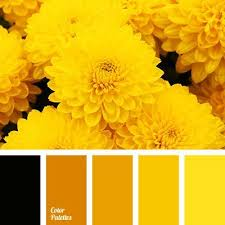 200 best yellow color palette ideas images on pinterest yellow