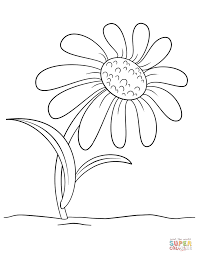 cartoon daisy flower coloring page free printable coloring pages