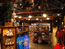 mouseplanet fort wilderness resort and campground a photo tour