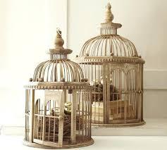 Home Interior Bird Cage Ez Care Bird Cage Luxury Home Interior 48 About Remodel Interiors