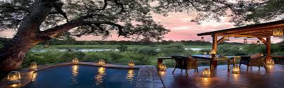 the world u0027s top incredible luxury treehouse hotels pure