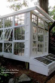 Small Backyard Greenhouse by Best 20 Build A Greenhouse Ideas On Pinterest Diy Greenhouse