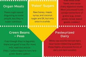 paleo food list for athletes infographic best infographics
