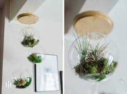 diy tutorial how to make a diy hanging airplant terrarium