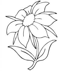 beautiful flower drawing simple beautiful flower coloring pages