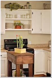 Building Kitchen Cabinet Best 25 Above Cabinets Ideas On Pinterest Above Kitchen