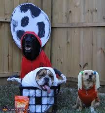 Dog Halloween Costume Ideas 125 Pets Images Animal Costumes Pet Costumes