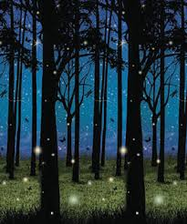 forest backdrop twilight forest plastic backdrop 4 ft x 30 ft