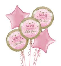 twinkle twinkle party supplies pink twinkle twinkle gender neutral 1st birthday party