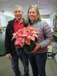 Flower Shops In Snellville Ga - locally grown poinsettias in atlanta georgia hall u0027s flower shop