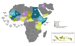 Where Is Germany On The Map by Female Mutilation And Cutting Unicef Data