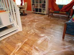 Fleas And Hardwood Floors - fibermania june 2010