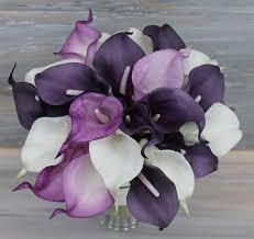 purple calla lilies 25 best purple calla lilies ideas on calla