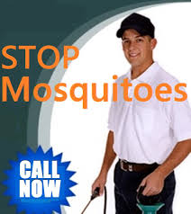 best mosquito lawn treatment tomball spraying yard and lawn