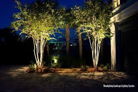 Moonlighting Landscape Lighting An Oceanfront Oasis The Lights Modern Landscape
