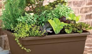 Patio Herb Garden Ideas Patio Herb Garden Best Of Quality Soil Herb Garden Ideas For A