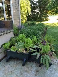 start your own easy kitchen garden organic gardening mother