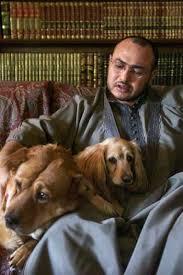dogs in islam animals in islam
