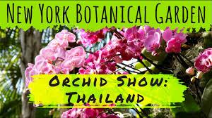 Botanical Garden In Bronx by New York Botanical Garden In The Bronx New York Vlog Mini 23
