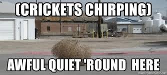 Crickets Chirping Meme - crickets chirping awful quiet round here tumbleweeds meme