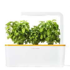 click and grow smart herb garden with 3 basil cartridges indoor