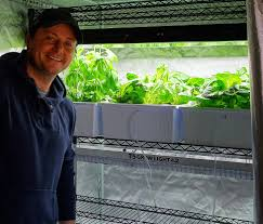 learn growing lettuce indoor hydroponic system cheap setup youtube