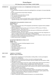 sle of resume workforce consultant resume sles velvet