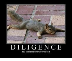 Dead Squirrel Meme - diligence you can sleep when you re dead meme on me me