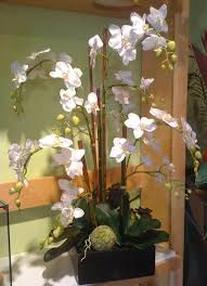 orchid flower arrangements decorating with orchids and a great trick for growing them