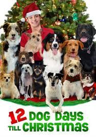 the dog who saved christmas 2009 movie hoopla digital