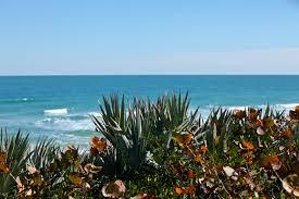 Florida scenery images Florida scenery photo flurries jpg
