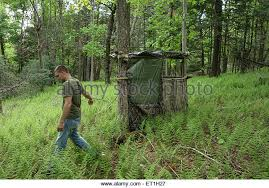 Tree Trunk Hunting Blind Hunting Blind Stock Photos U0026 Hunting Blind Stock Images Alamy
