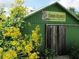 native plant nursery home