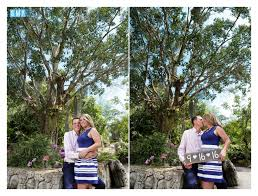 Botanical Garden Naples by Naples Botanical Garden Weddings U2013 Naples Wedding Photographer