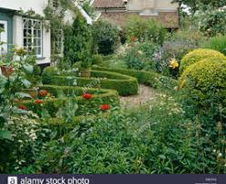 English Cottage Gardens Photos - english cottage garden with gravel path and low clipped box