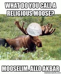 Moose Meme - moose puns kappit